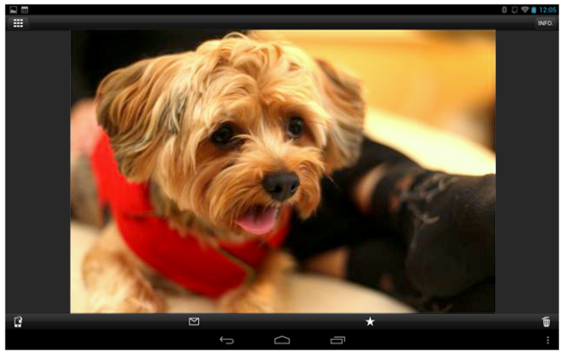 You can view, save or delete photos on your camera using  your tablet